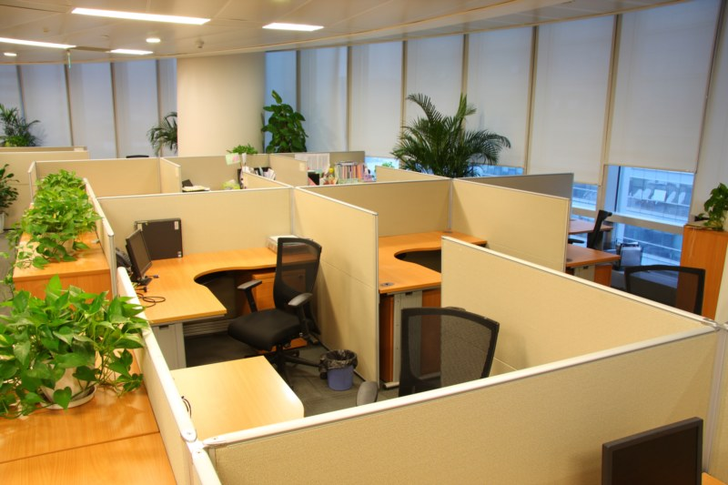 Feng Shui  articles  Business  Designing your office